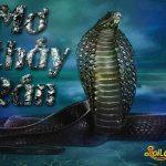 Nằm mơ thấy rắn đánh đề con gì?